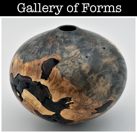 Gallery of Forms